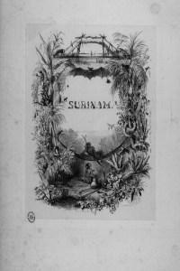 Habitantes, flora y fauna de Surinam